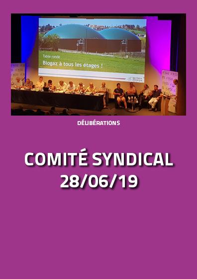 Comité du 28 juin 2019