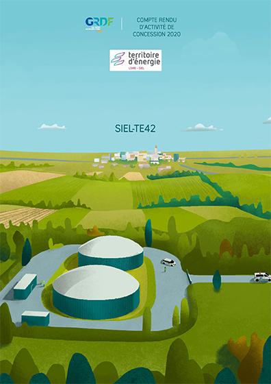 COMPTE-RENDU D'ACTIVITÉ DE CONCESSION GAZ GRDF 2020