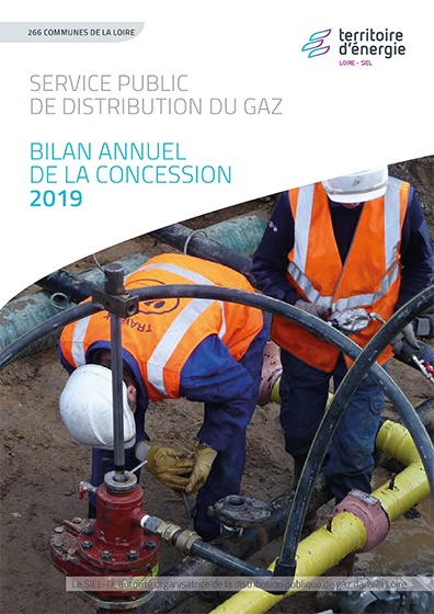 Bilan annuel concession gaz 2019